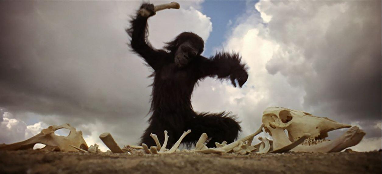 2001 odissea scimmia