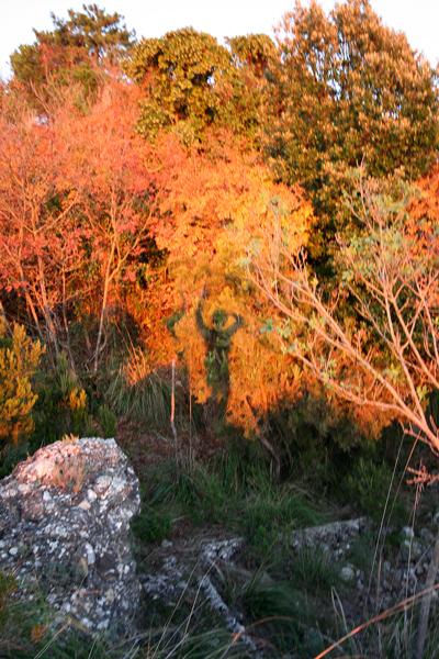 Autoritratto scattato nel parco naturale regionale di Portofino