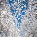 monte penna inverno